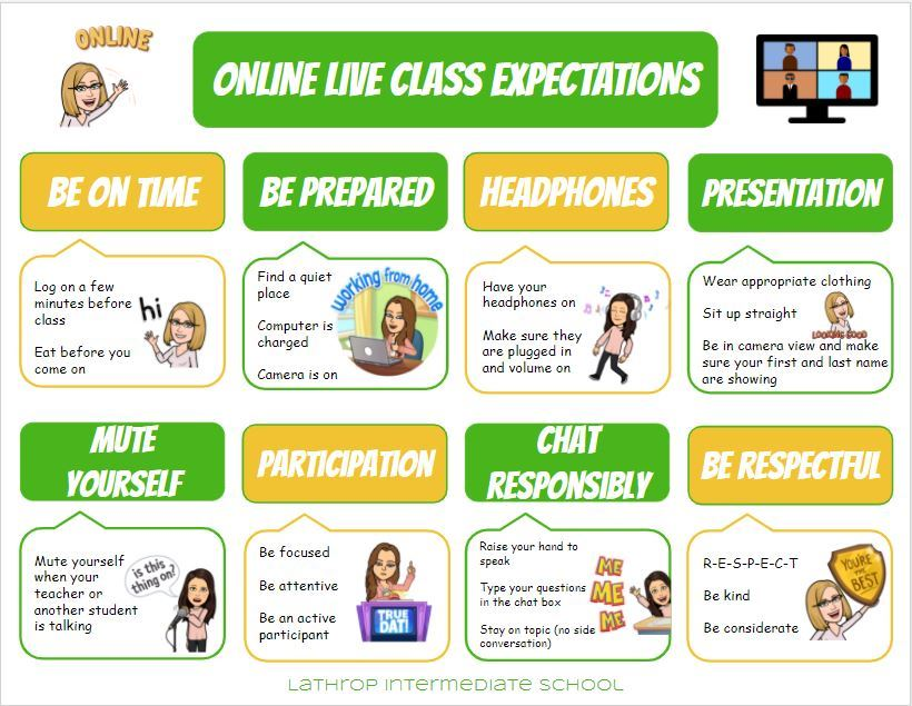 Online Live Class Expectations