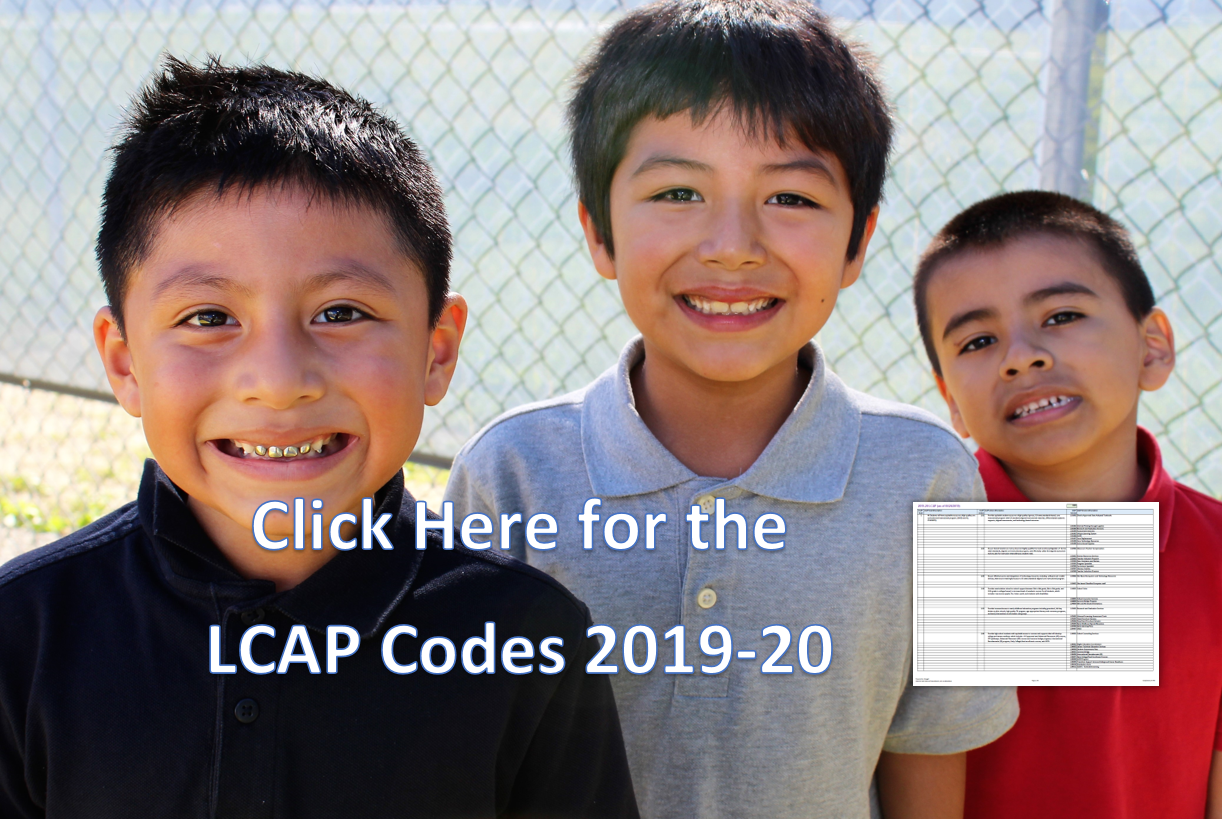 Click Here for the LCAP Codes 2019-20
