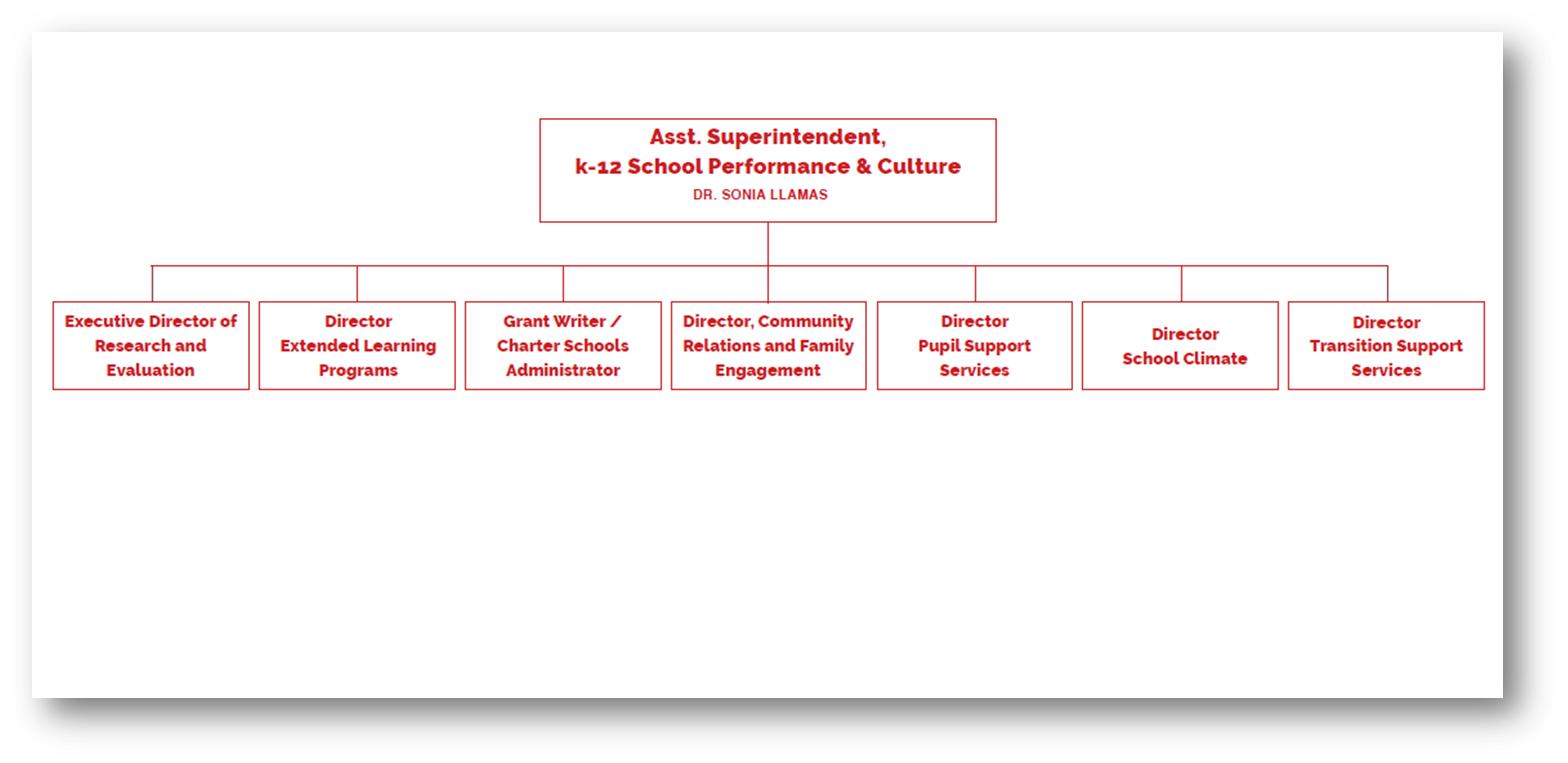 School Performance & Culture organizational chart