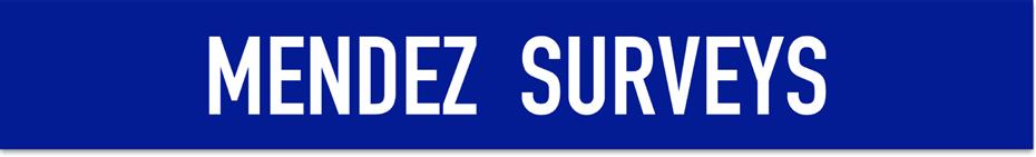 Mendez Survey Page