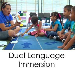 Dual Language options